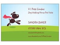 Dog Walking /Home Visiting Service
