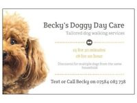 Becky's Doggy Day Care - Walking & Pet sitting services (Newcastle/North Tyneside)