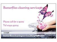 Butterflies Cleaning Service