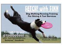 'FETCH with FINN' dog walking/running/training & Pet Sitting ##Trustworthy- experienced- insured##