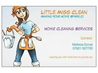 LITTLE MISS CLEAN & CO