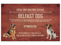 Dog Walking, South Belfast Area. £10. Discounts available.