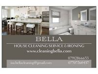 Professional House Cleaning, Ironing and Window Cleaning Services.