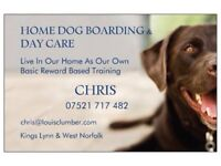 Norfolk Home Dog Boarding & Day Care