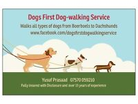 Dogs' First Dogwalking Service - Glasgow southside - limited spaces available