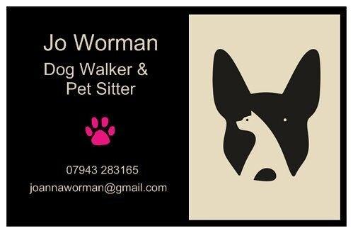 Dog walker & pet sitter available Holt, Sheringham, the coast and villages