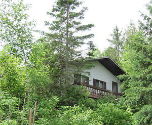 Lakeside Vacation Rentals