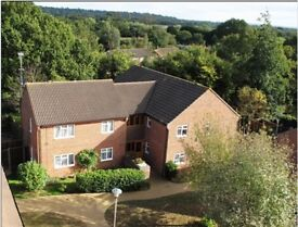 Cookham - delightful, spacious, one bedroom apartment for rent