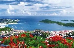 Cruises! Guided Tours! - Great Travel Deals!