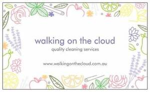 Walking on the cloud Ridgehaven Tea Tree Gully Area Preview