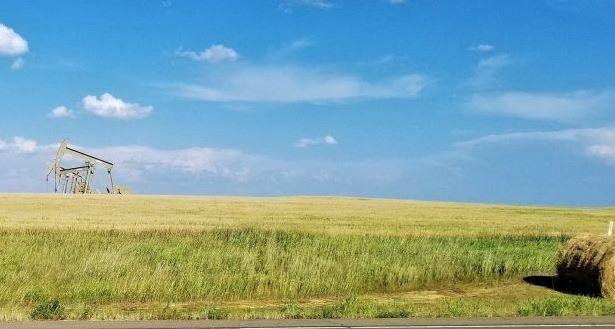 Oil Gas Coal Mineral Rights Near Daglum, Stark County, North Dakota  - $2,620.00