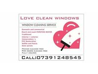 Window cleaner/window cleaning