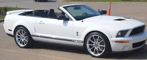 Shelby GT500 Cobra