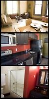 Fully Furnished Luxurious Living - Everything Included