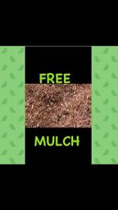 FREE MULCH Collaroy Manly Area Preview
