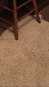 AREA RUGS FROM CLEAN SMOKE FREE HOME, EXCELLENT CONDITION