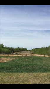 20 Picturesque Acres at Seba Beach, AB for sale