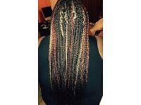 Cornrows, Box Braids, Twists and Double Braids. Mobile Afro and European, Unisex Hair Braider