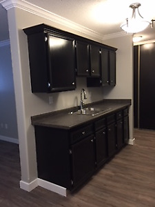 Centre Mall @ Your Door Step - Renovated 2 Bed - No Lease