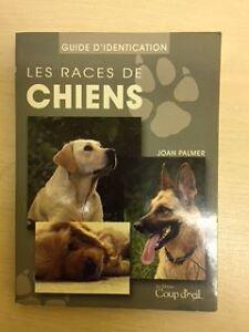 Les races de chiens Gatineau Ottawa / Gatineau Area image 1