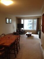 3 bedroom house in Orangeville