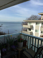 James Bay OCEAN VIEW condo