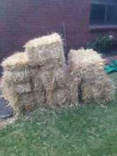 Hay Bales - Used Straw Vermont South Whitehorse Area Preview