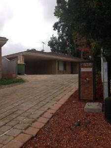 Room to rent in shared house - Kardinya WA Kardinya Melville Area Preview