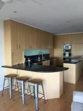 Kitchen - 4 years old, will negotiate appliances separately Queenscliff Manly Area Preview