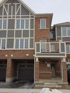 Beautiful New 3 BR Townhouse (1586 SQF) for Rent in Milton $1700