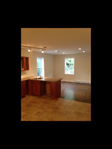 Gorgeous Two Bedroom Flat in Quinpool Area for Rent in October