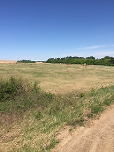 Full serviced Alberta acreage for sale by motivated owner