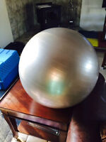 """21"""" Exercise Ball for Sale"""