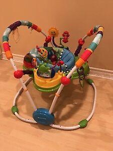 Baby Einstein  Activity Jumper Special Edit