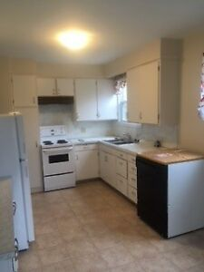 12 Spruce St Sussex-  3 Bedroom for rent