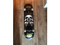 Sefulium long skateboard