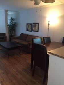 Furnished 1 bedroom James Bay Condo