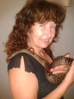 Spotted Childrens Python  Harristown Toowoomba City Preview