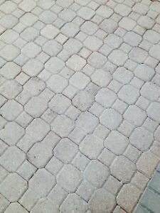 Looking for Paving Stone