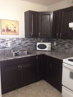 Newly reno 1 Bedroom basement apt-$900!! Everything included!