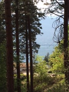 Lake view lot in Okanagan Centre