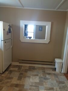 Renovated One Bedroom Apartment
