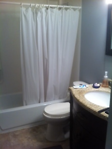 930 5th ave north -  Renovated unit Avaiable Feb 1st
