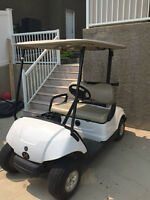 2010 Electric Golf Cart For Sale - Excellent Condition