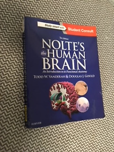 Nolte's Human Brain : An Introduction to its Function Anatomy