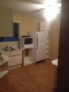 Private Suite Room with Kitchenette, Full Bathroom