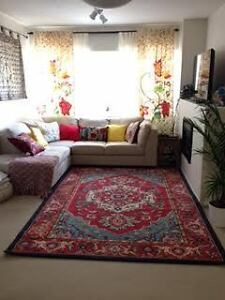 Colorful area  rug in great condition