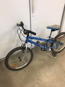 Youth Bike, 5Speed Speed Shifter, Front / Rear Brakes