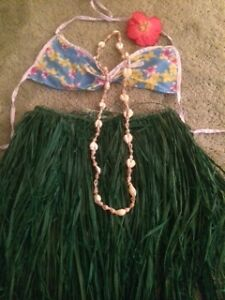 Hawaiian Hula Skirt Costume (Toddler)