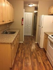 Walkout 2 bedroom fully renovated apartment